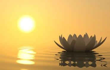 lotus-spirituality